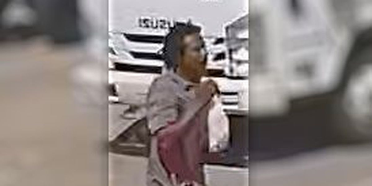 Kenner Police searching for car burglary suspect