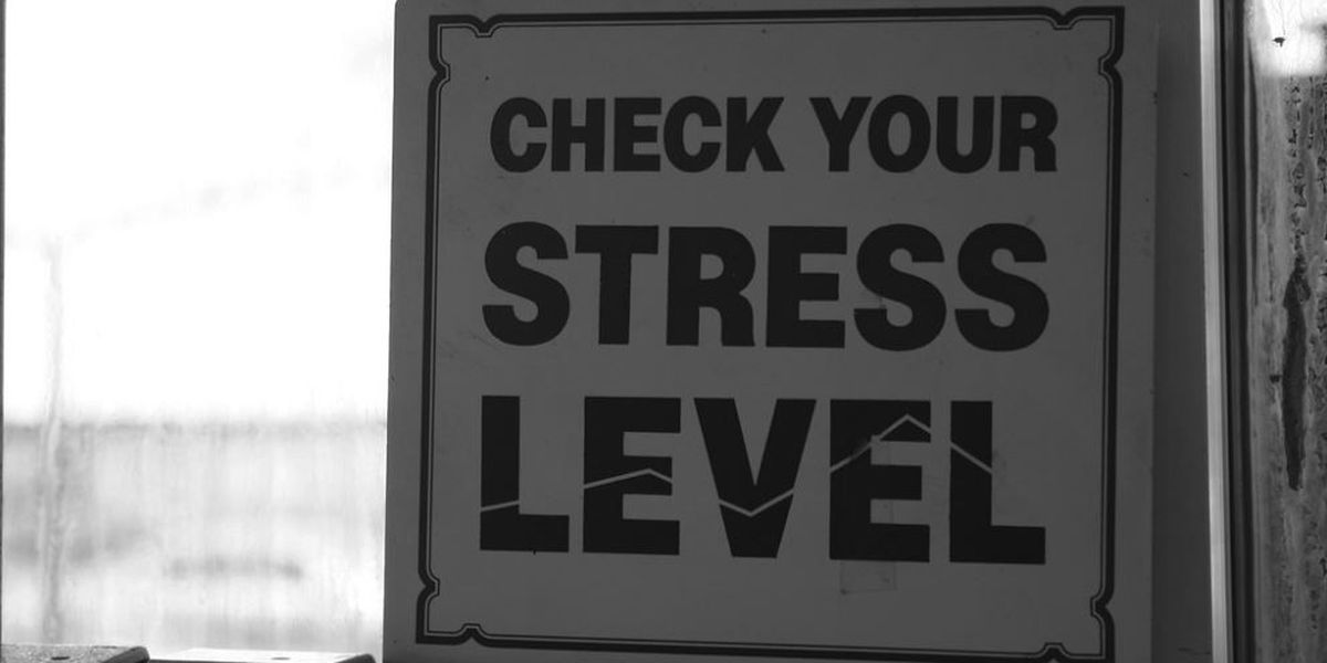 Louisiana ranked No. 2 in list of 'Most Stressed States'