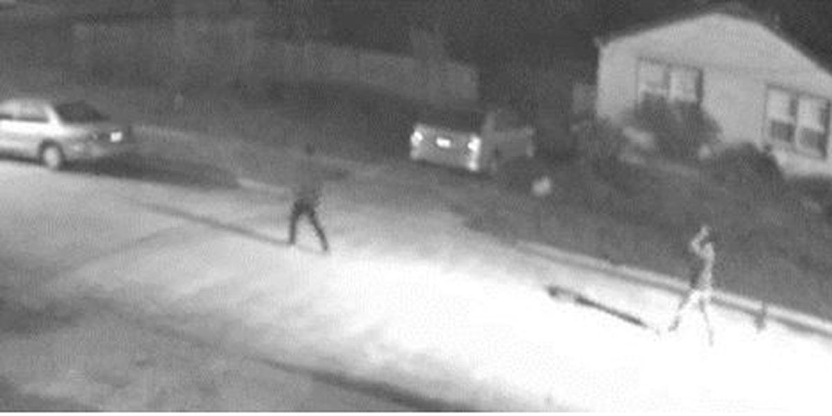 Police hope surveillance video helps catch car thieves