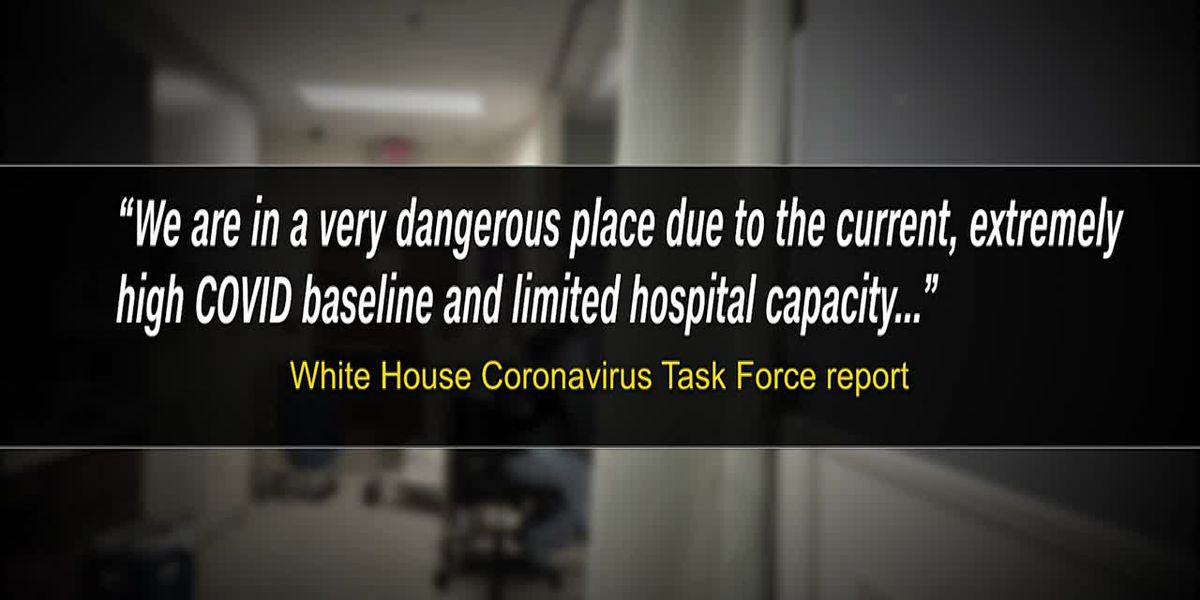 White House task force issues dire COVID-19 warning