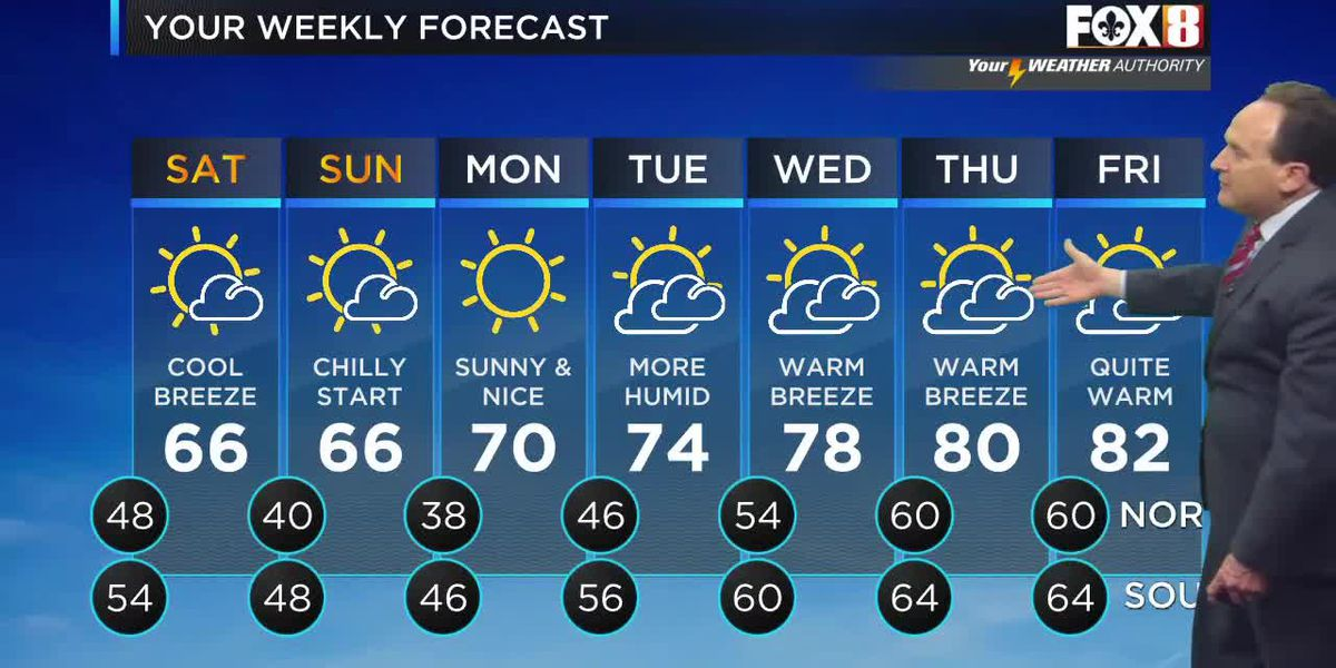 Bruce: Friday evening weather forecast