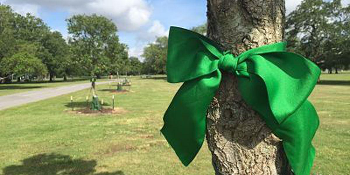 Beyond Katrina: City Park plants trees to remember, renew