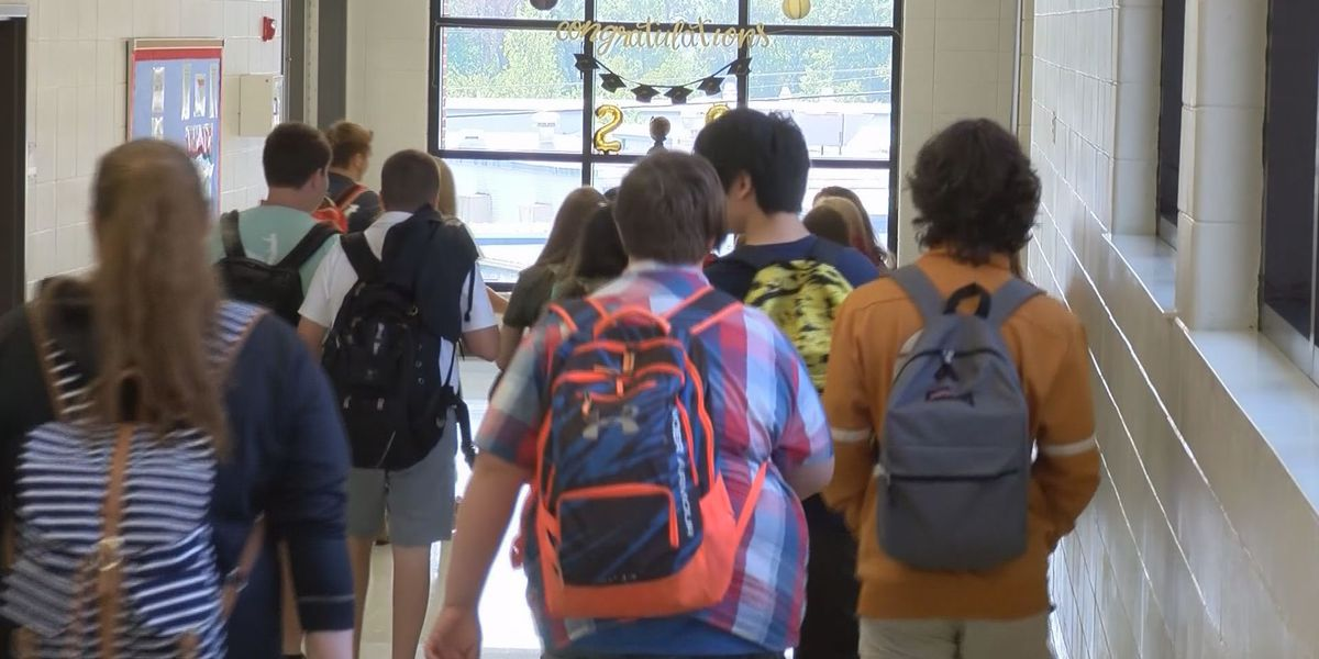 Together Louisiana discusses concerns about reopening schools amid the COVID-19 pandemic