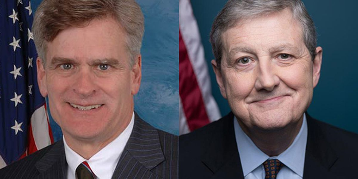 Coronavirus: Cassidy and Kennedy involved in efforts to help LA & send Americans checks