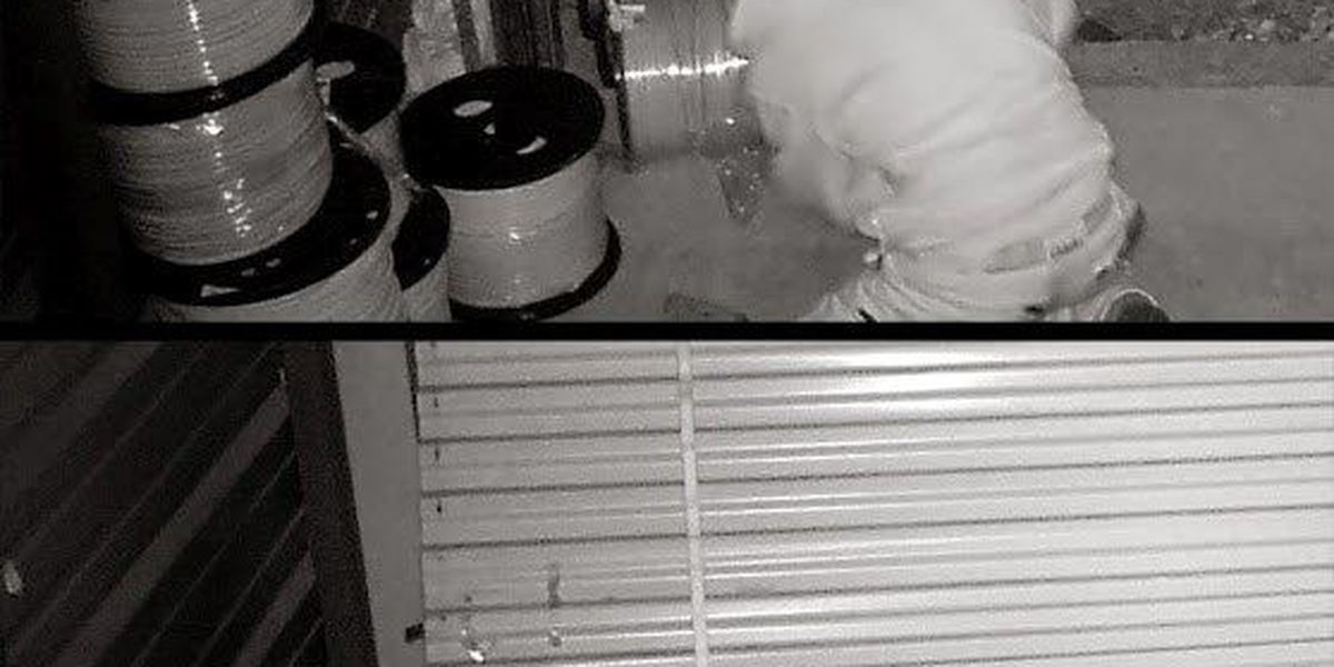Surveillance pictures show burglar stealing electrical wire from storage unit