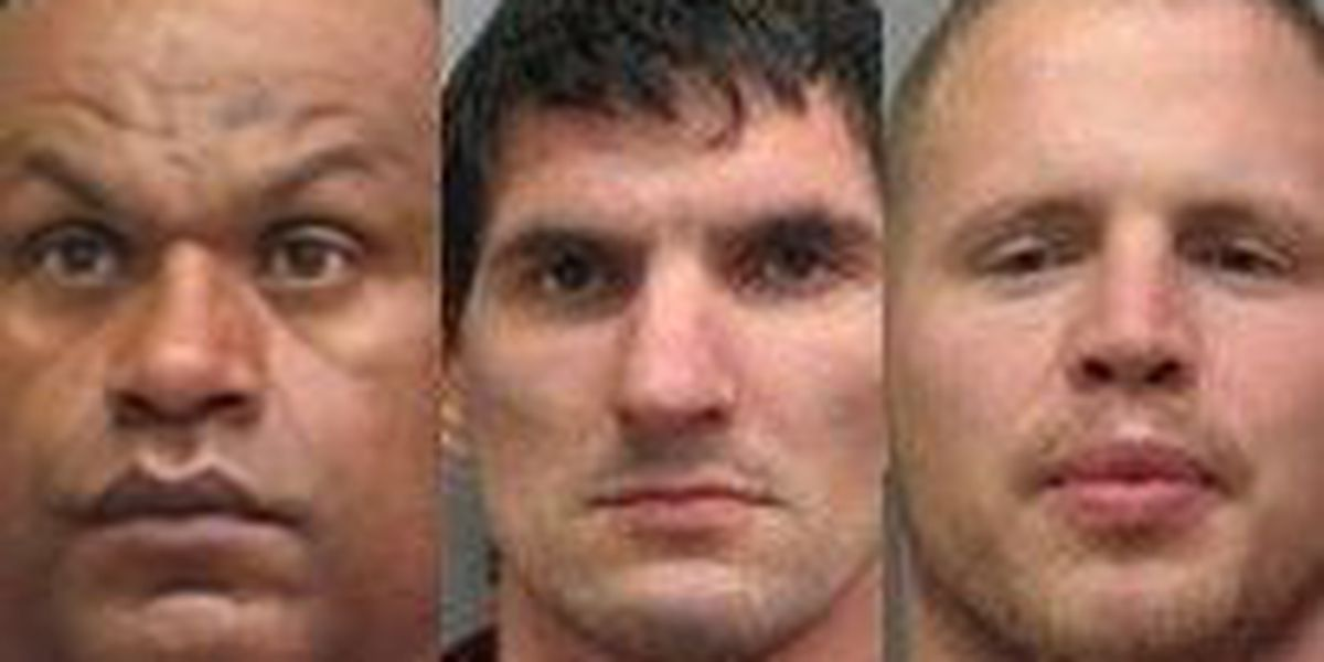 LPSO arrests 3rd sex offender this year for violating parole