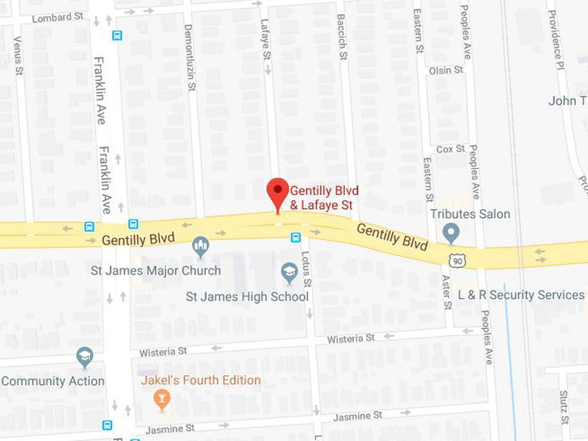 Man hit, killed while trying to direct car in Gentilly driveway