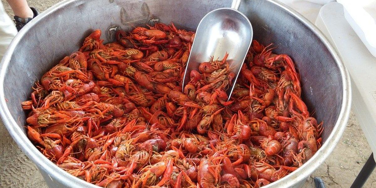 NOLA Weekend: Boiled Crawfish for every Day of the Week
