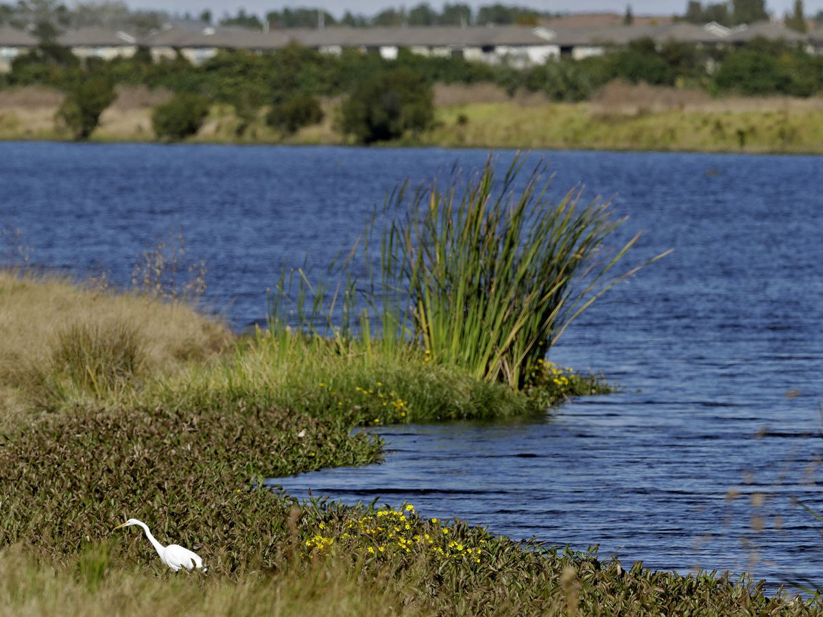 Trump removes protections for waterways, aiding developers