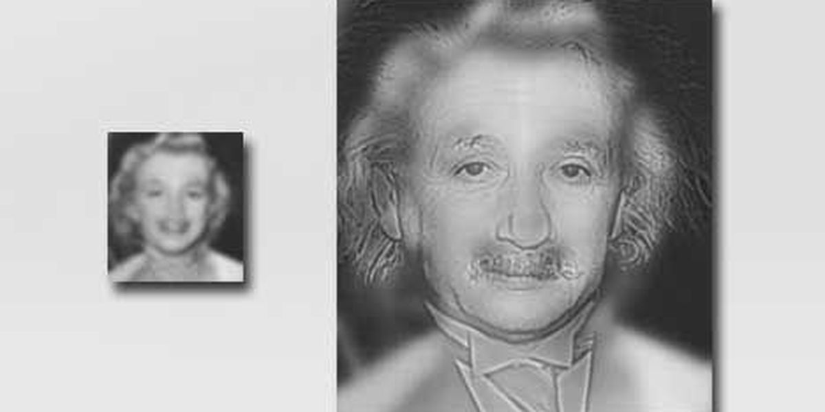 Beauty or brains? Einstein-Monroe photo may reveal if you need glasses