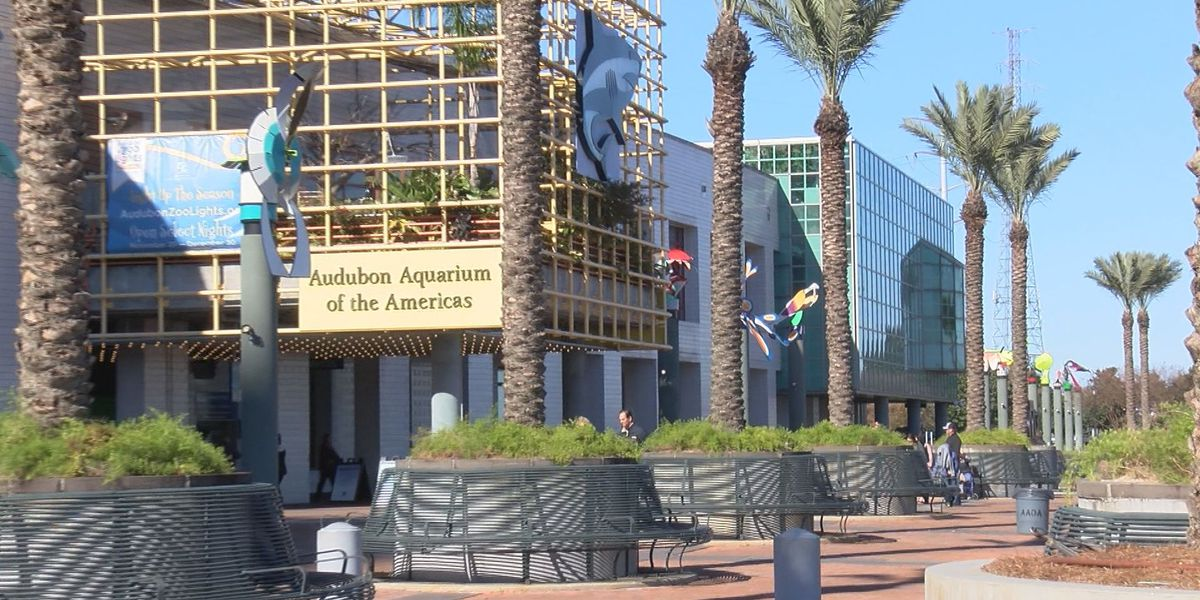 OIG questions whether Audubon Nature Institute used public funds for parties and Saints tailgating