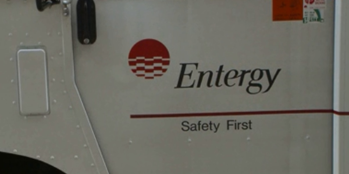Committee hears from public before Entergy resolution vote