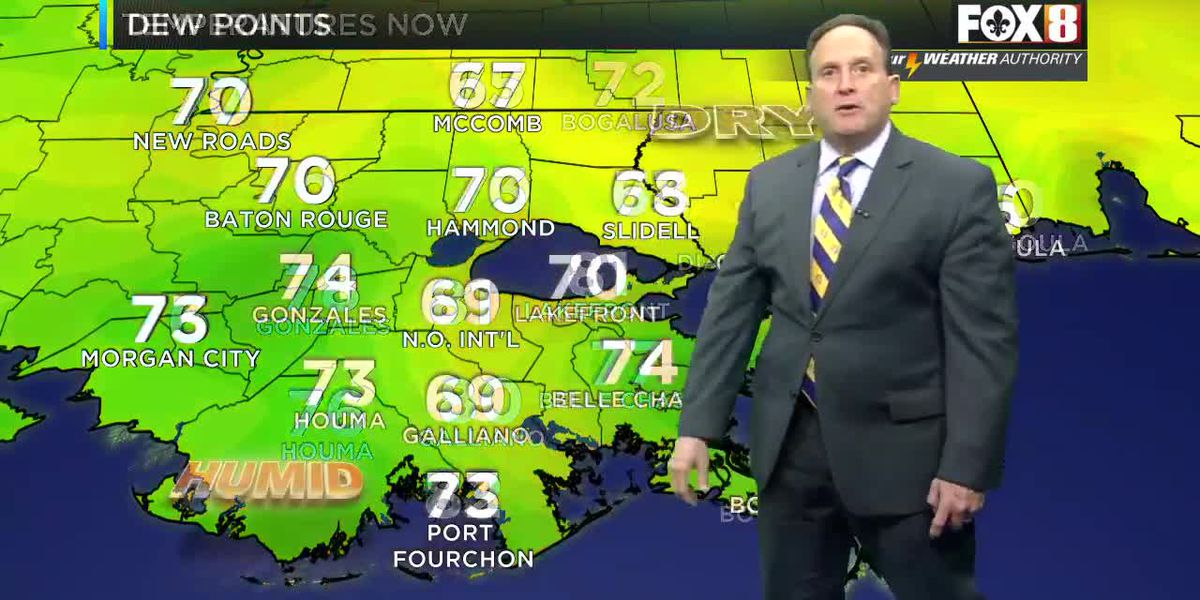 Bruce: Friday night forecast
