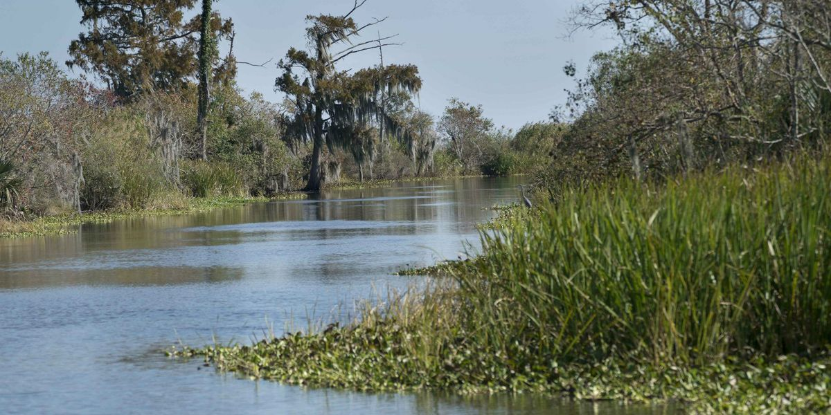Could Lake Pontchartrain and Lake Maurepas become one?