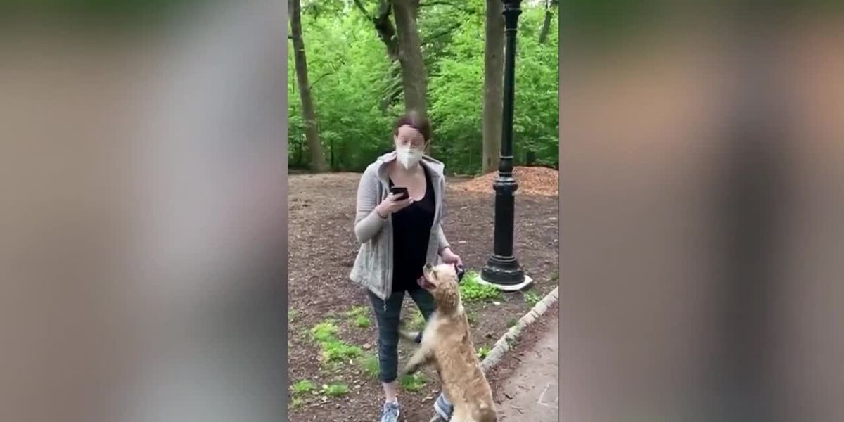 White woman fired over video of Central Park confrontation with black man