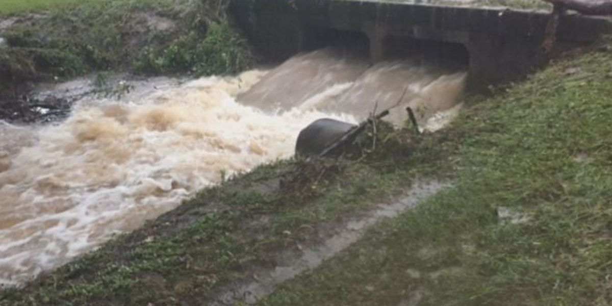 Rob Masson reports on the deluge in Tangipahoa Parish