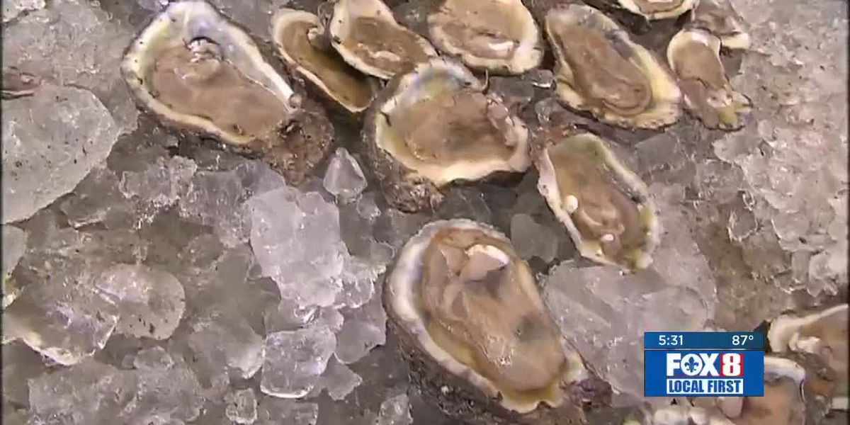 Oyster industry hurting from Bonne Carre Spillway water