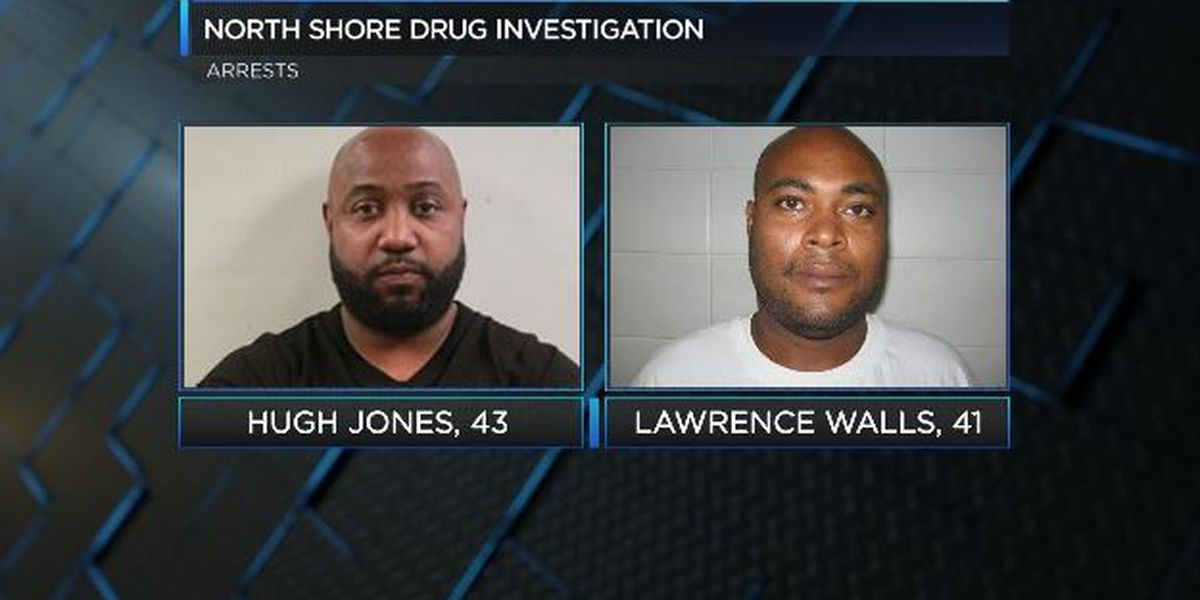 Investigators: Drugs, weapons and alligator carcass found on North Shore