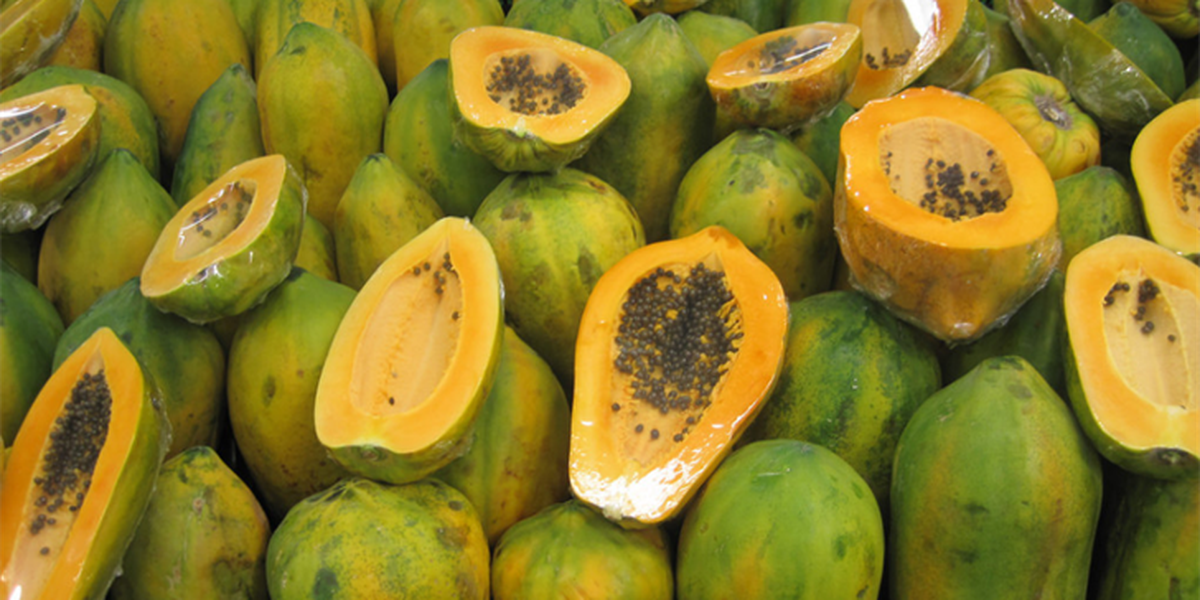 2 in Louisiana among 141 nationwide sickened by papayas from Mexico