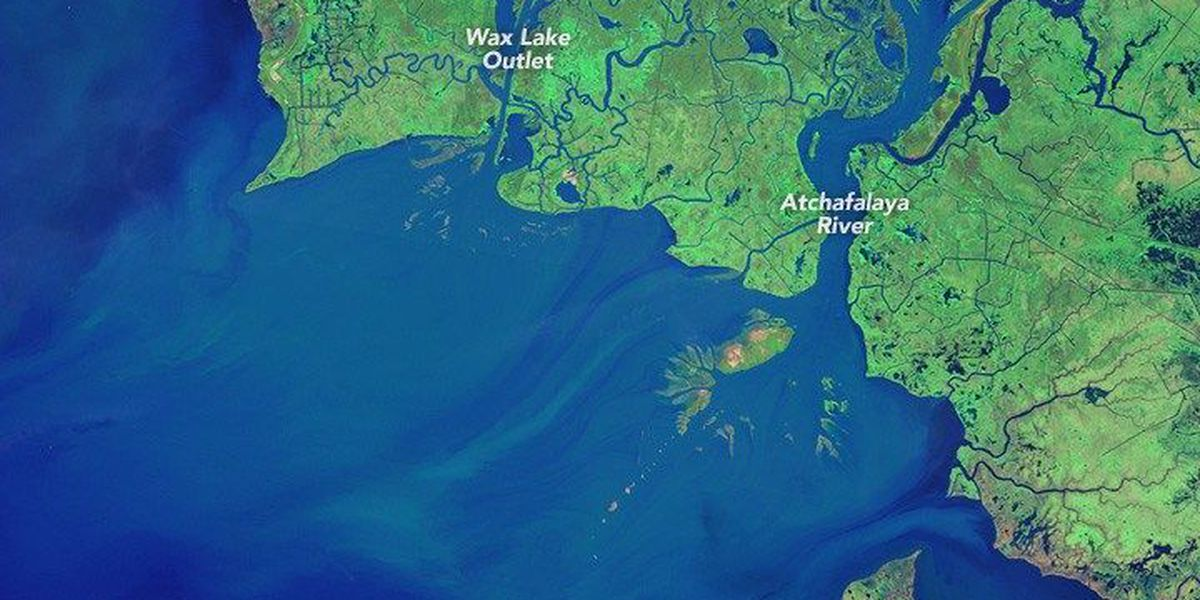 All is not lost along the Louisiana coast where some new land has been created