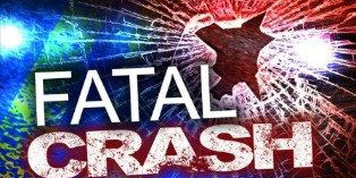 18-year-old killed in Lafourche Parish crash