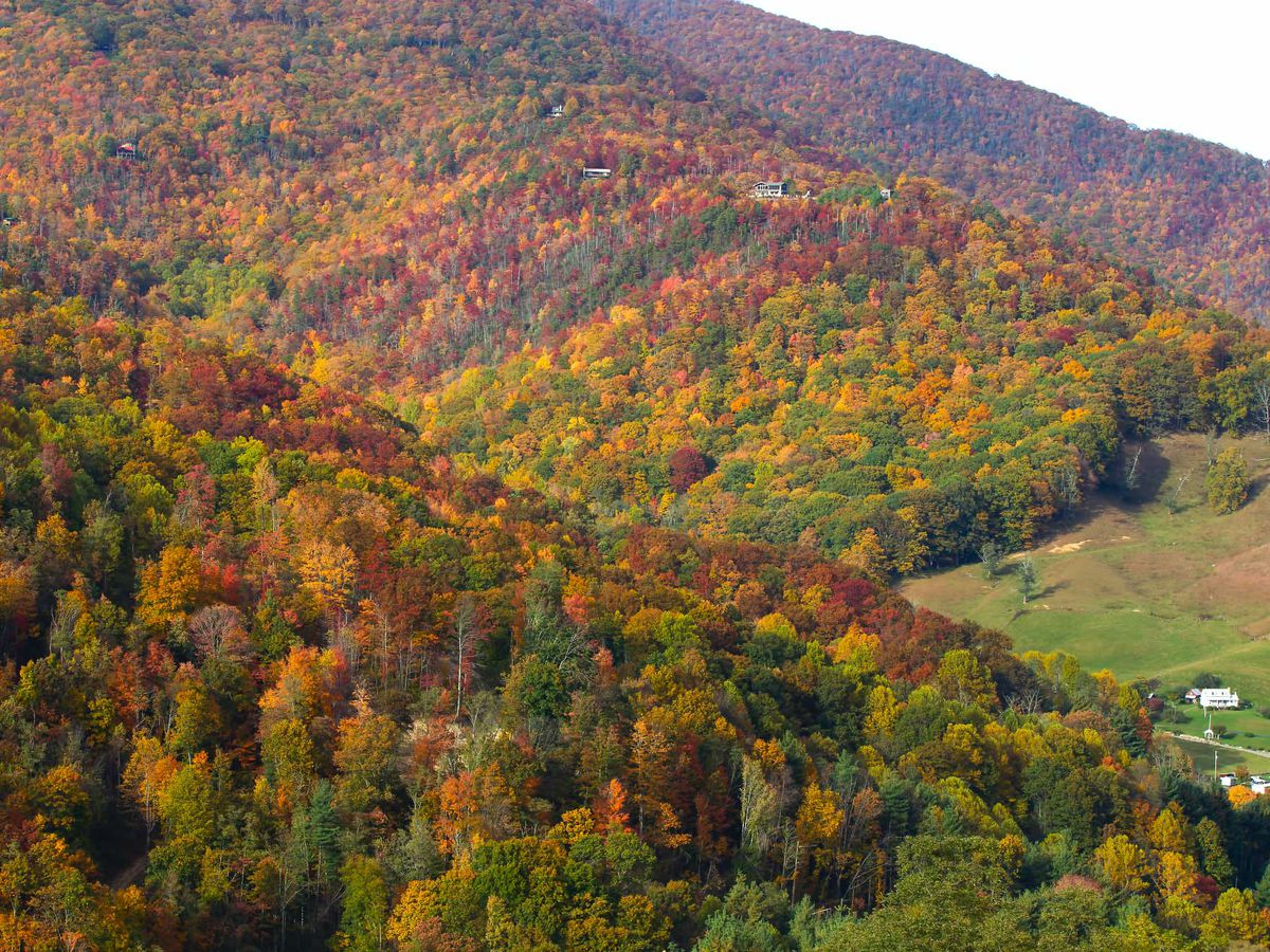 A little late this year, the Smoky Mountains are about to light up in fall color