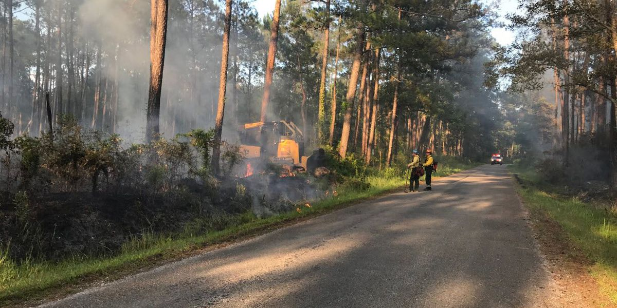 Officials: Fire reported at Big Branch Marsh National Wildlife Refuge