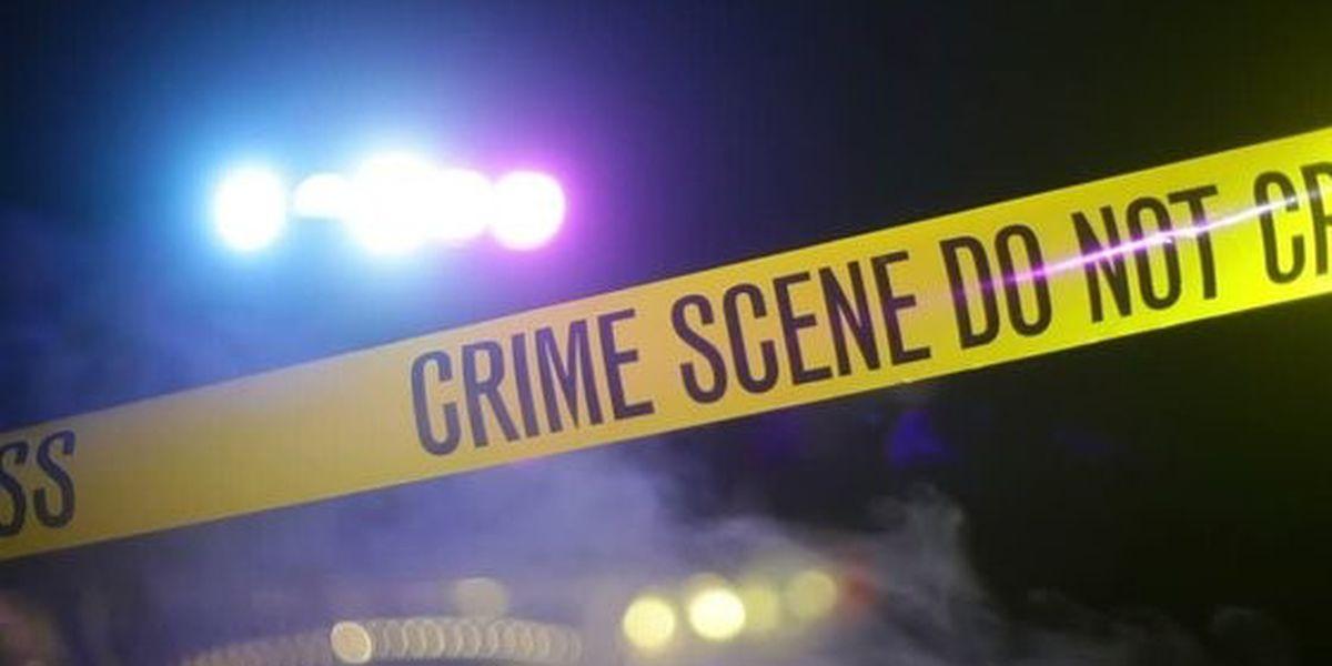 Woman shot to death on Luna Street