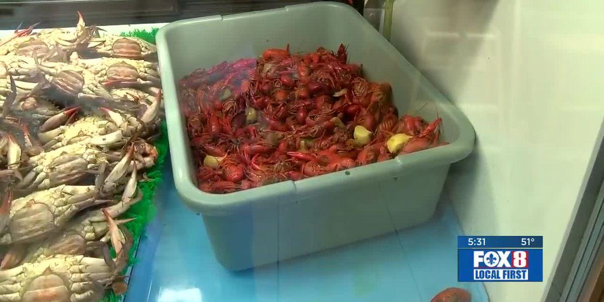 Reasonable crawfish prices to start off this year's season