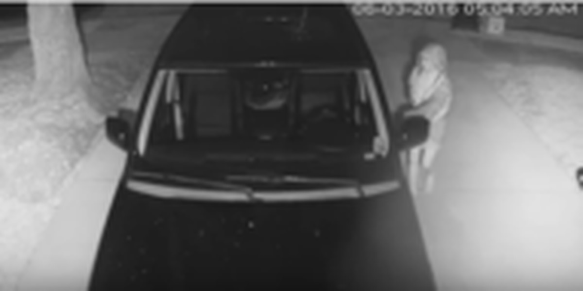 NOPD seeks public's help in finding car burglar