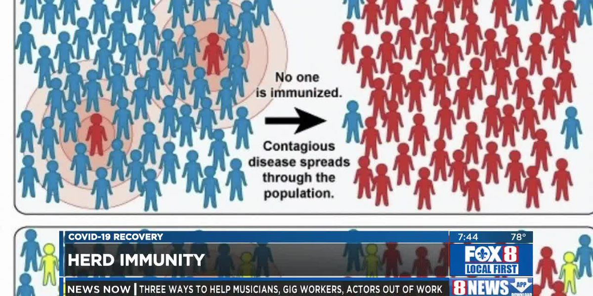 Herd Immunity - Dr. James Newcomb