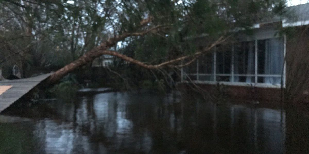 Dozens rescued in Orange Beach flooding caused by Sally