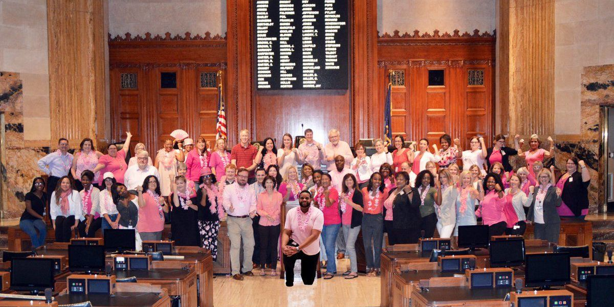 State and local officials go pink to honor Rep. Julie Stokes