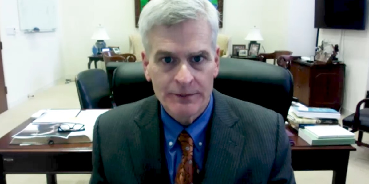 """Sen. Cassidy: """"Republicans put the constitution above loyalty to a person"""""""