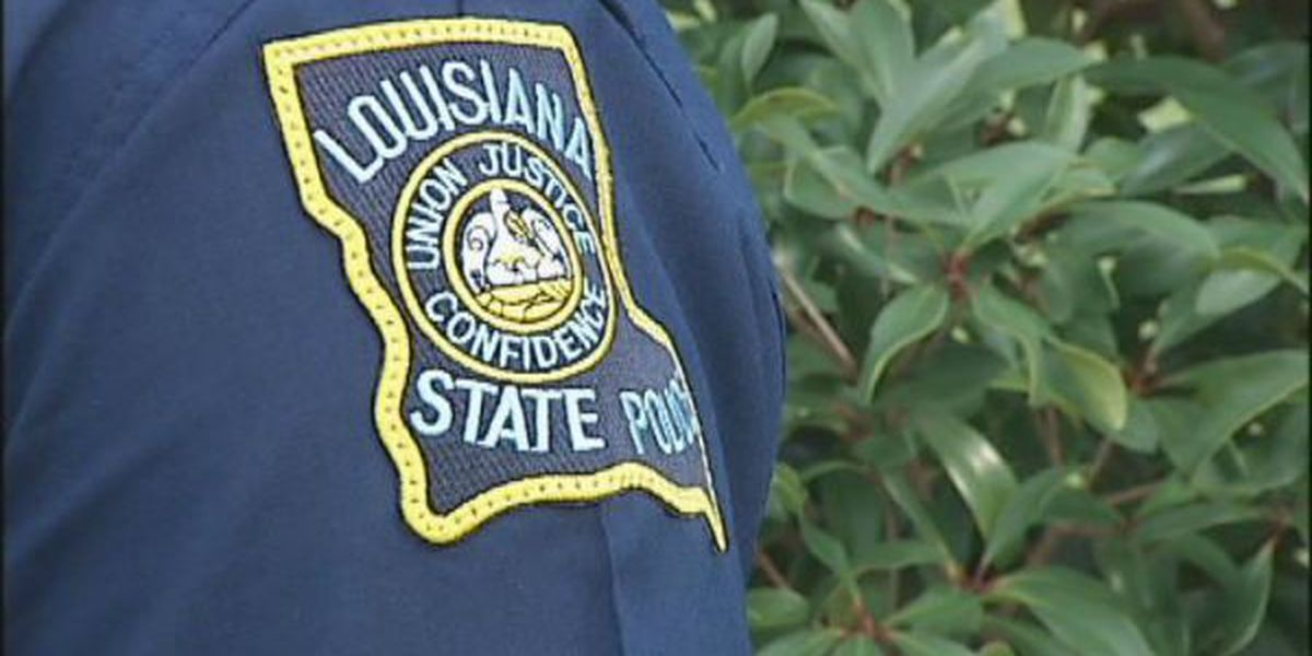 LSP: Kenner man strikes, kills driver pulled over on I-55