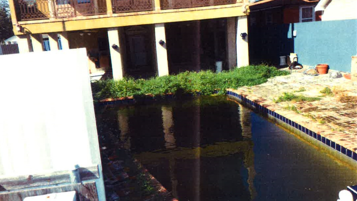 FOX 8 Defenders: Blighted Gentilly pool creates health concerns for neighbors