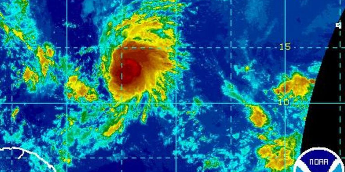 David: Irma is not our storm