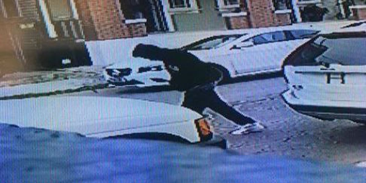 NOPD search for Elmira Street car thief