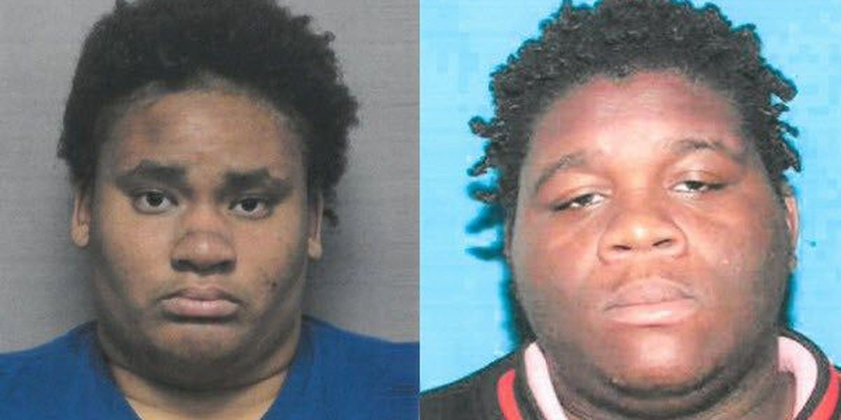 Police: Pair captured after carjacking pizza delivery driver in Gretna
