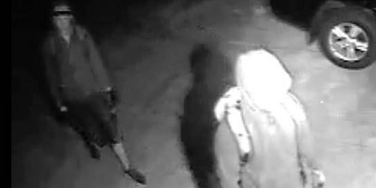 Mandeville Police investigate series of crimes on Tupelo Trace