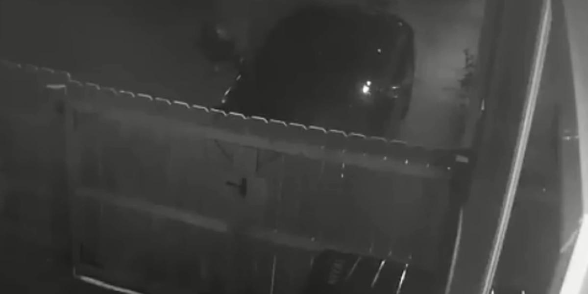 VIDEO: Police searching for car burglars
