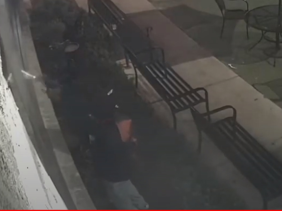 NOPD releases video of gunman shooting into Neyow's Creole Cafe