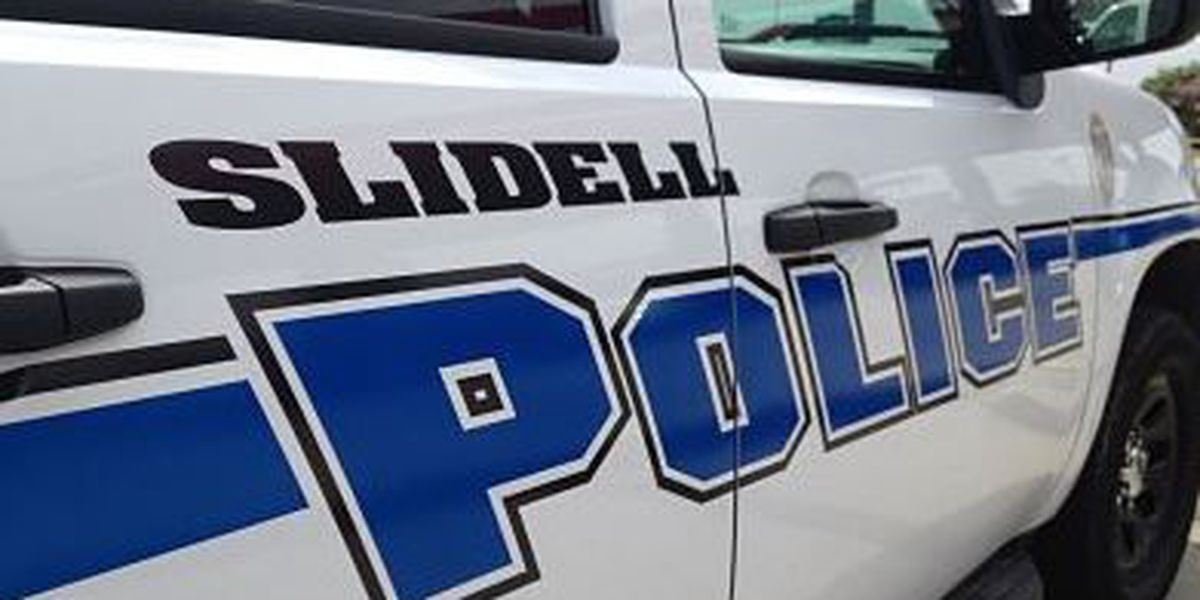 Threatened Slidell homeowner comes home to dead dog