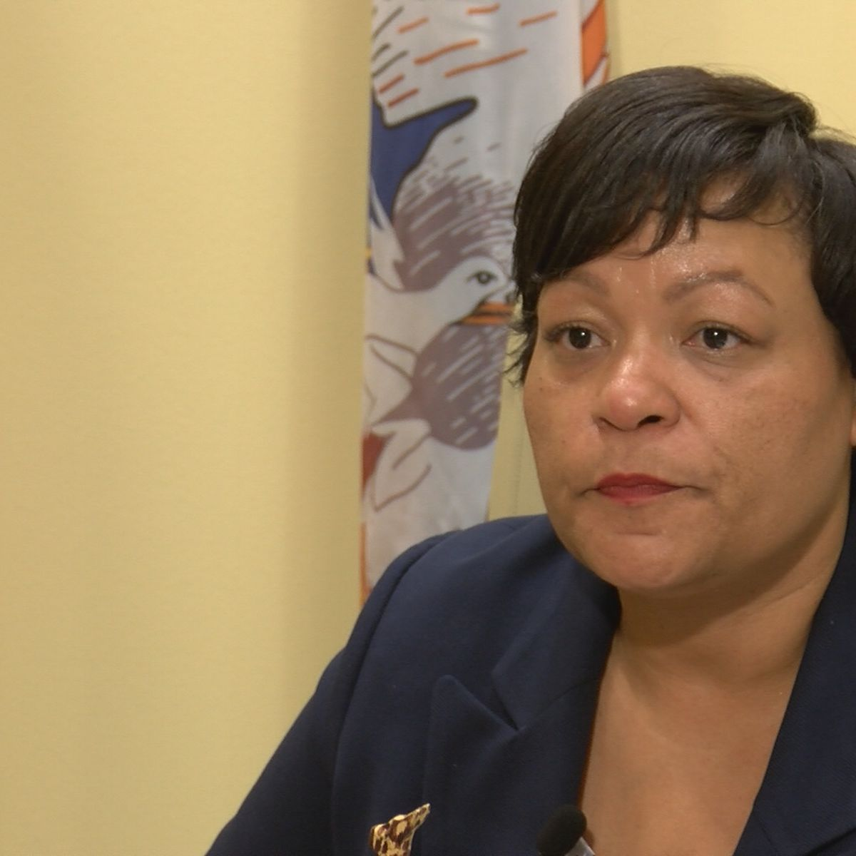 Cantrell doubles down, responds to criticism against bond and tax propositions