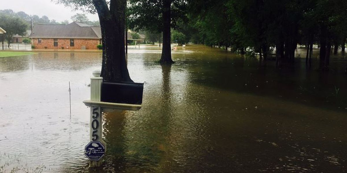 Shelby: Expect historic flooding on the North Shore in some spots
