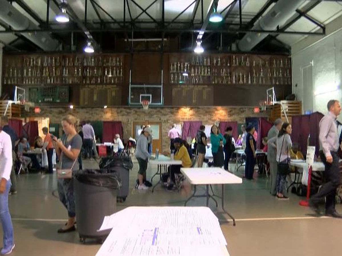 Voters pass two of three tax initiatives in Orleans Parish