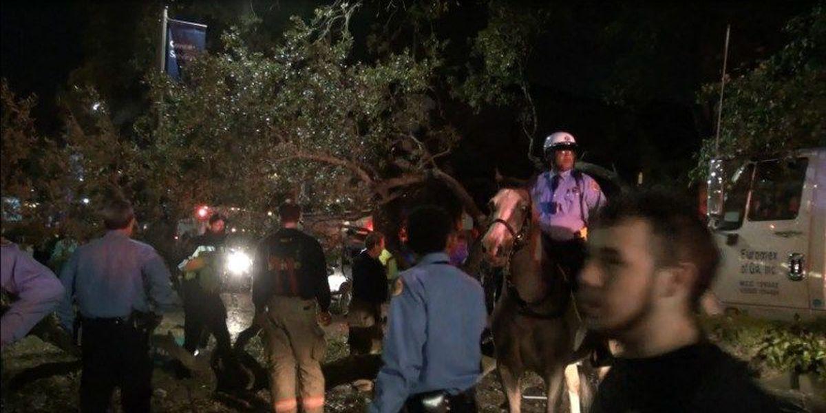 Truck strikes Uptown oak, branch injures Mardi Gras revelers