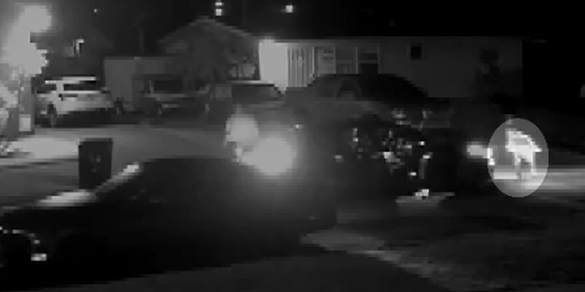Police arrest 11-year-old boy accused of nearly two dozen car burglaries in Gentilly