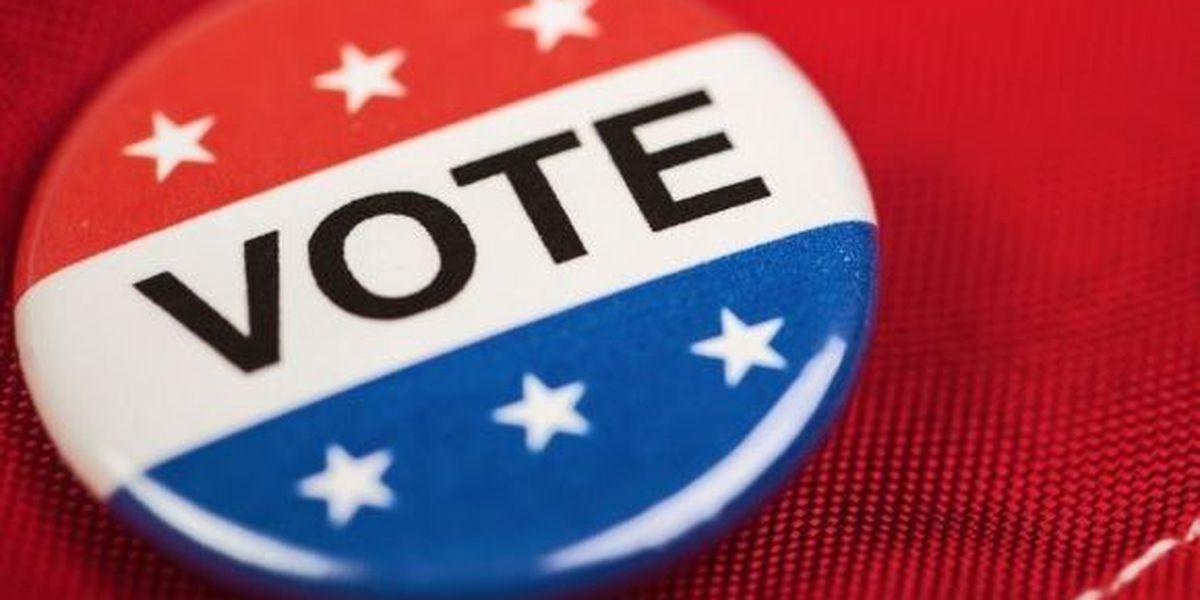 Parishes host voter registration events