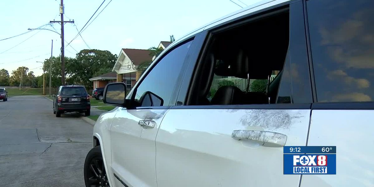 Lakeview residents wake up to find windows of multiple vehicles smashed out